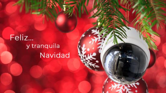 Todo el equipo de Prodein os desea unas felices fiestas y próspero año nuevo